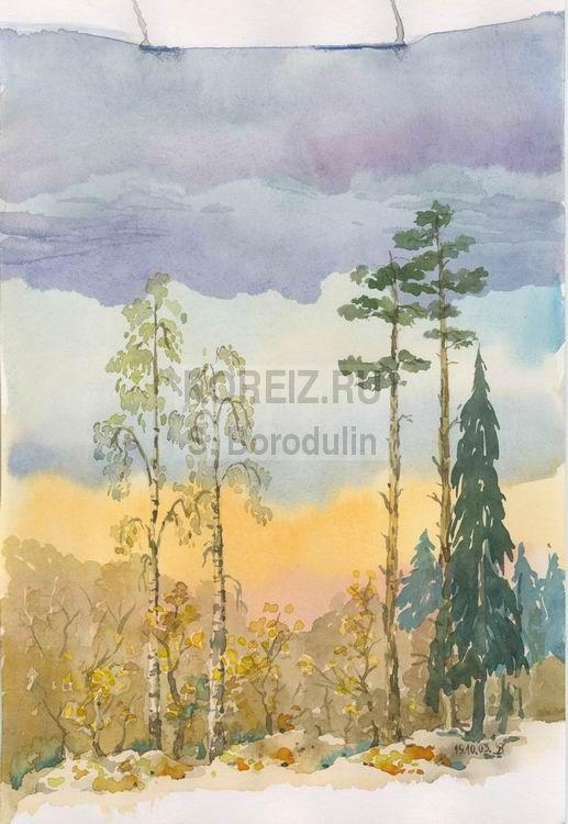 живопись пейзажи леса и сосен: